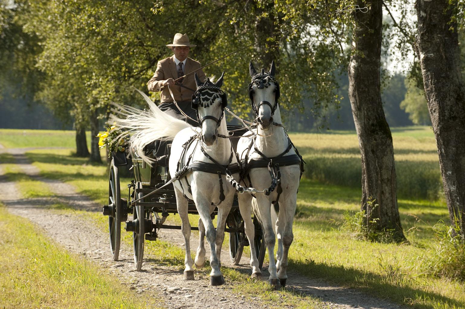 Hochzeit Kutschenfahrt
